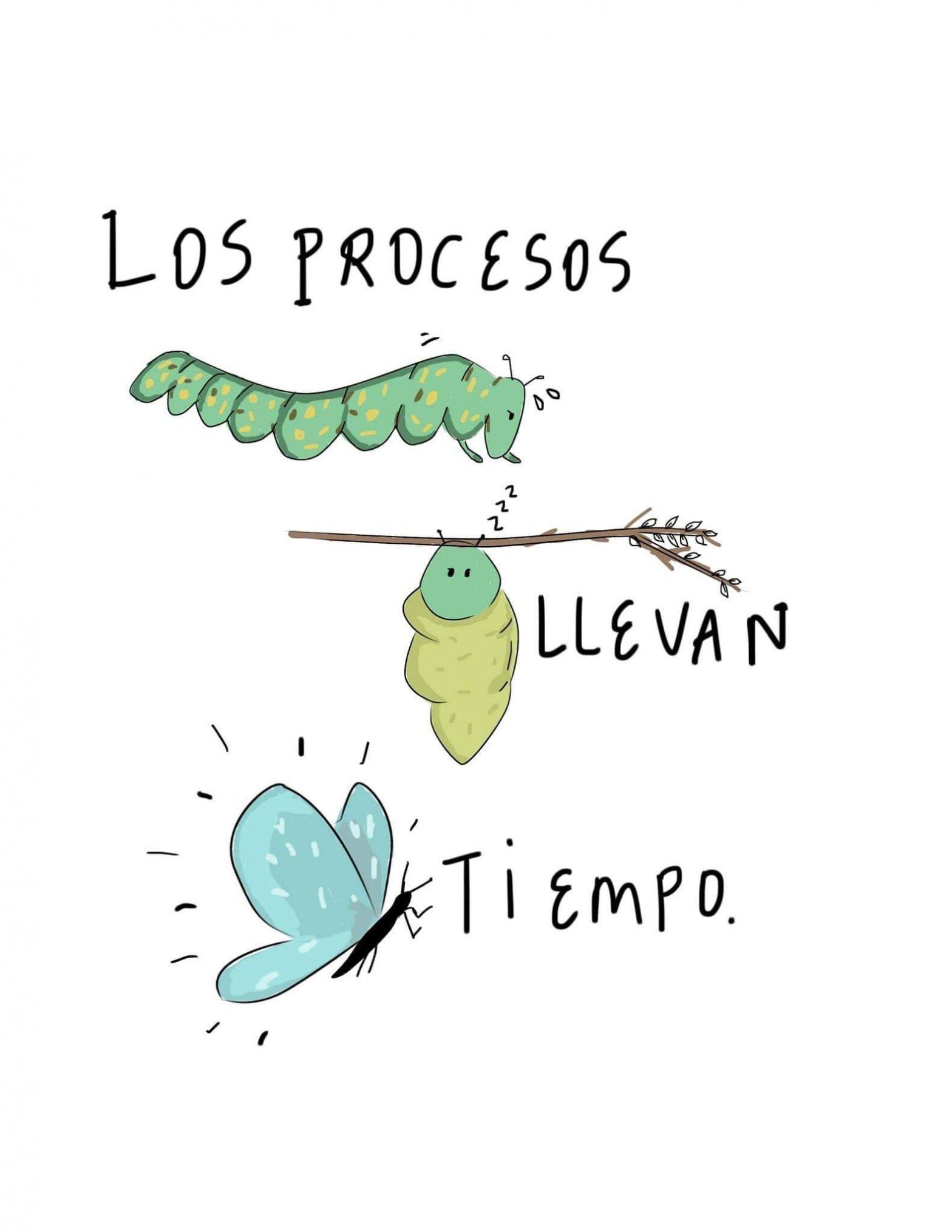 los procesos llevan tiempo