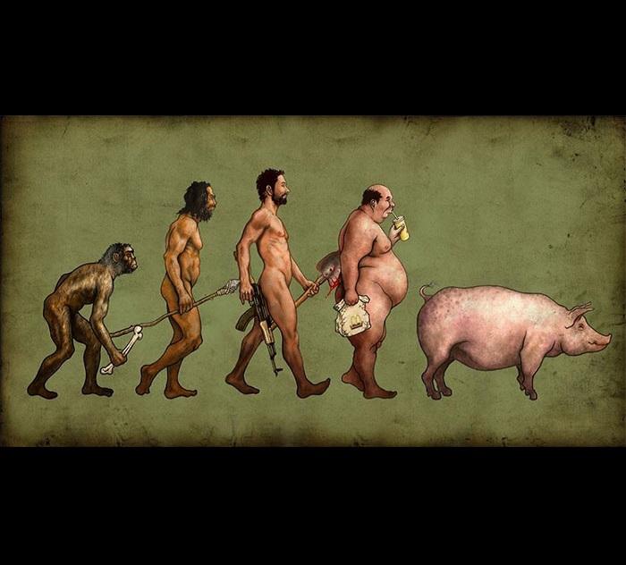 meme evolucion