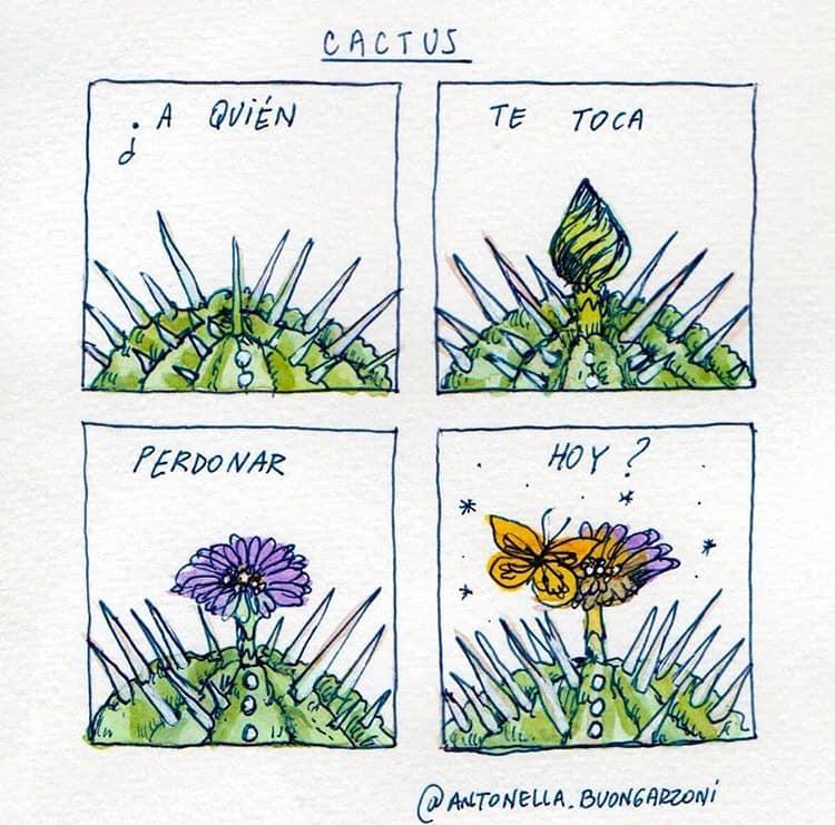cactus frases