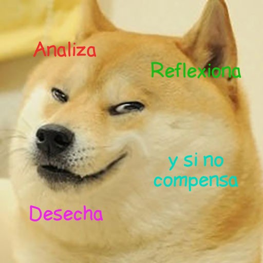 ironia meme perro dog meme