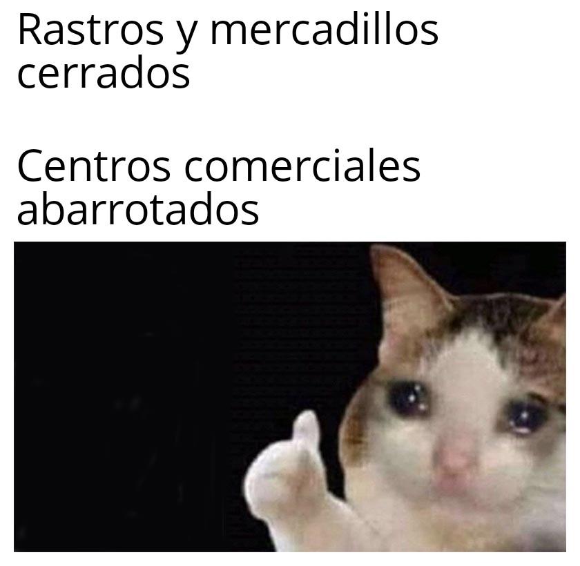 gatos-meme-catmemes